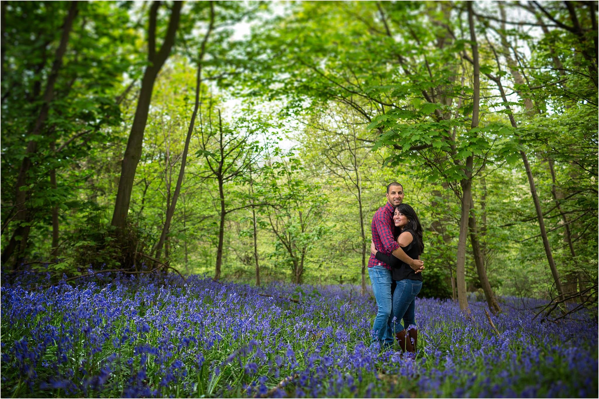 A couple during their pre wedding shoot amongst a mass of bluebells.